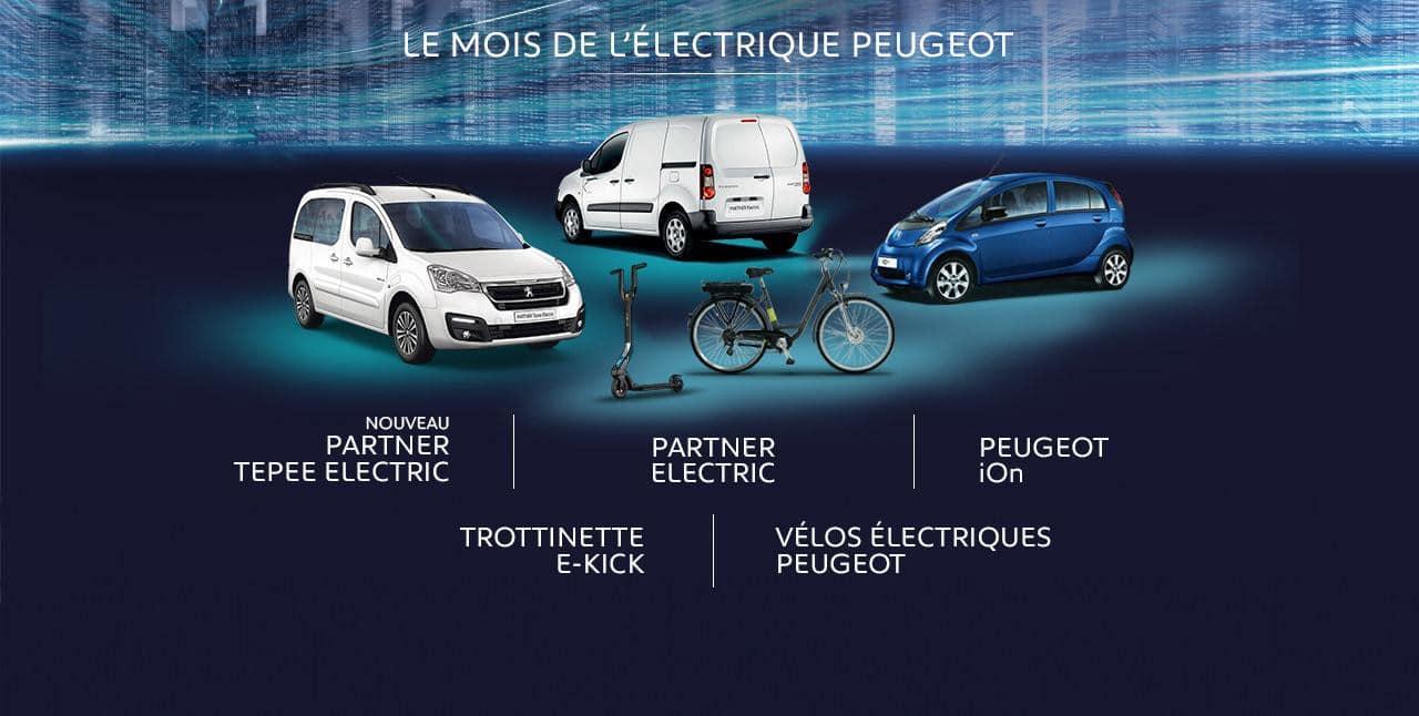 Typographies d'identité Peugeot. Applications des typographies. Peugeot Electrique iOn. Partner Tepee, Partener Electric, Peugeot iOn, Trotinette E-Kick, vélo électrique.