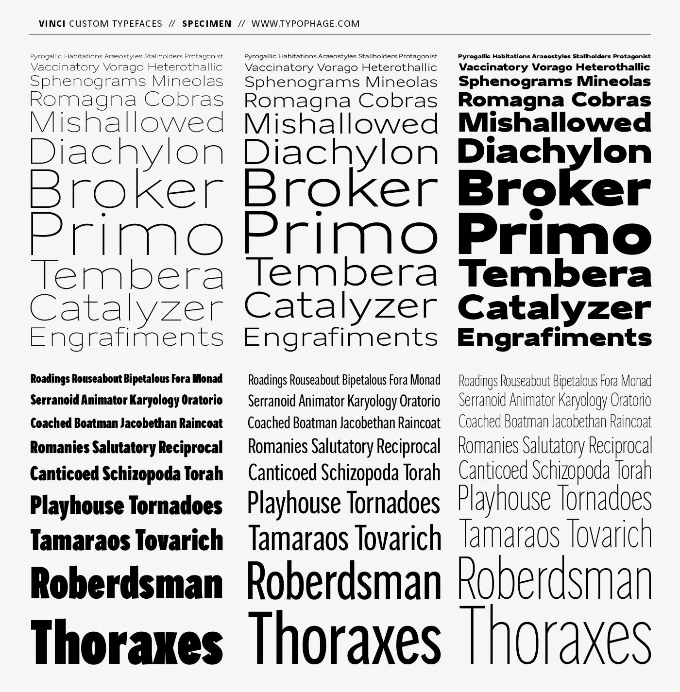 Typographies exclusives Vinci. Specimen de caractères.